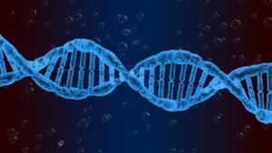 badanie genetyczne ngs cena